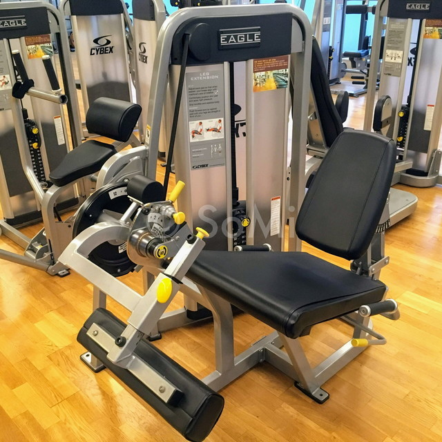 Leg extension machine in the gym of Hotel Prima Seoul