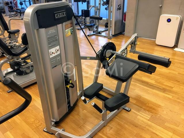 Leg  curl machine in the gym of Hotel Prima Seoul
