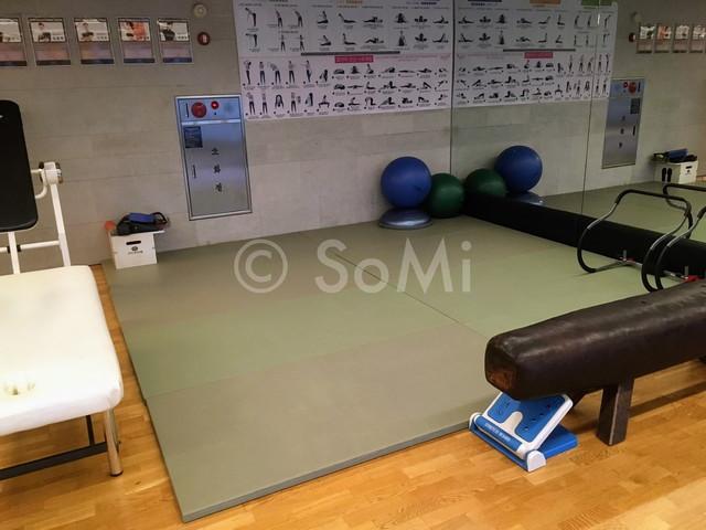 Gym of Hotel Prima Seoul