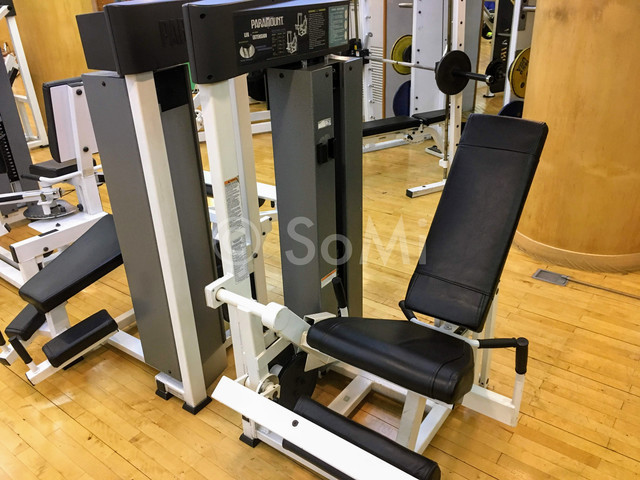 Leg extension machine in the gym of Hotel Riviera Cheongdam