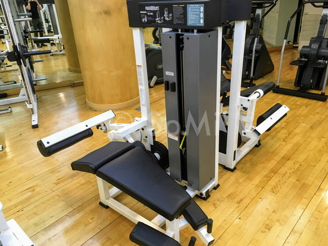 Leg curl machine in the gym of Hotel Riviera Cheongdam