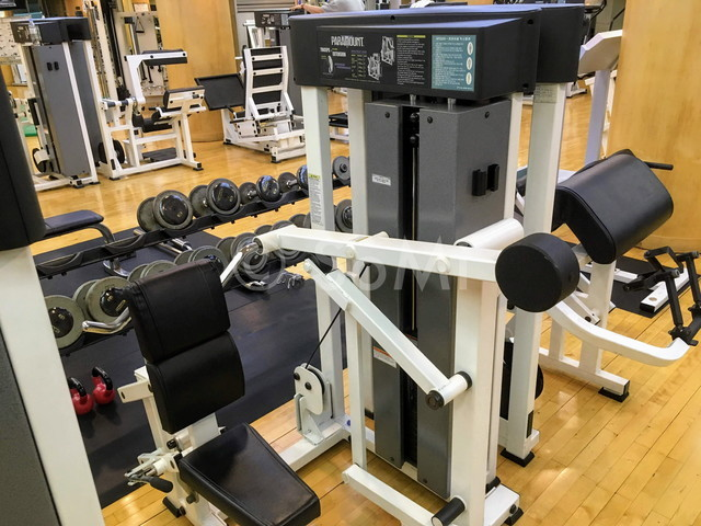 Over head triceps extension machine in the gym of Hotel Riviera Cheongdam
