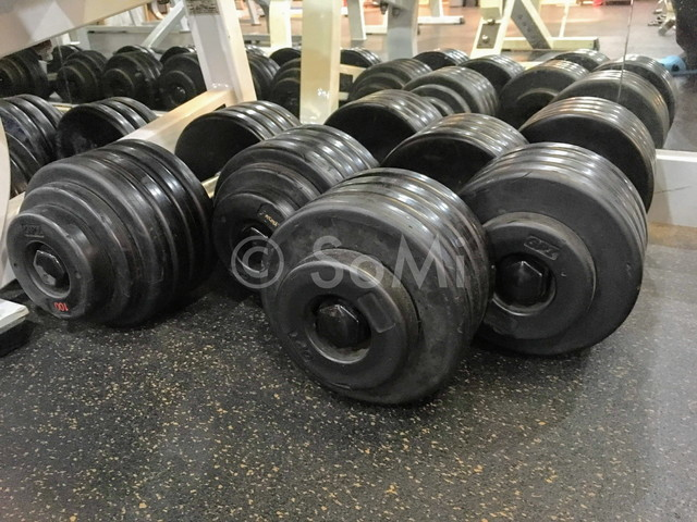 Dumbbells at Provista Hotel