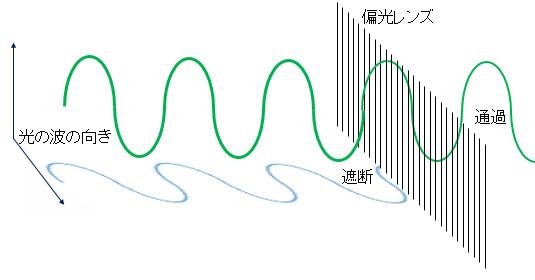 偏光レンズ原理イメージ