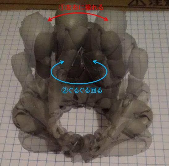 股間を回転させる写真