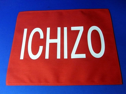 f:id:ICHIZO:20111110041045j:image