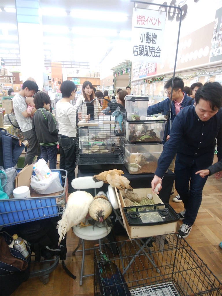 f:id:IKOMA_Tsubasa8:20181113022635j:image