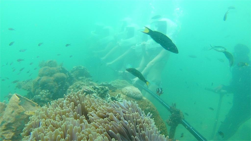 コタキナバルで海底歩行(シーウォーキング)している