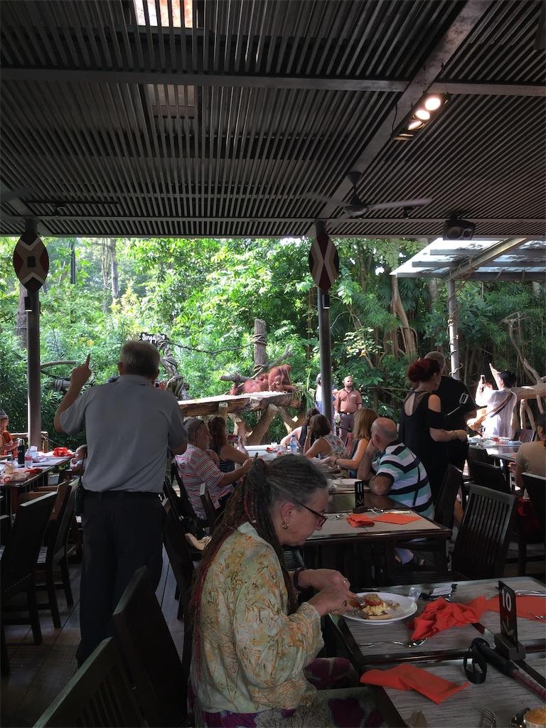 シンガポール動物園でオランウータンと朝食を食べた体験談