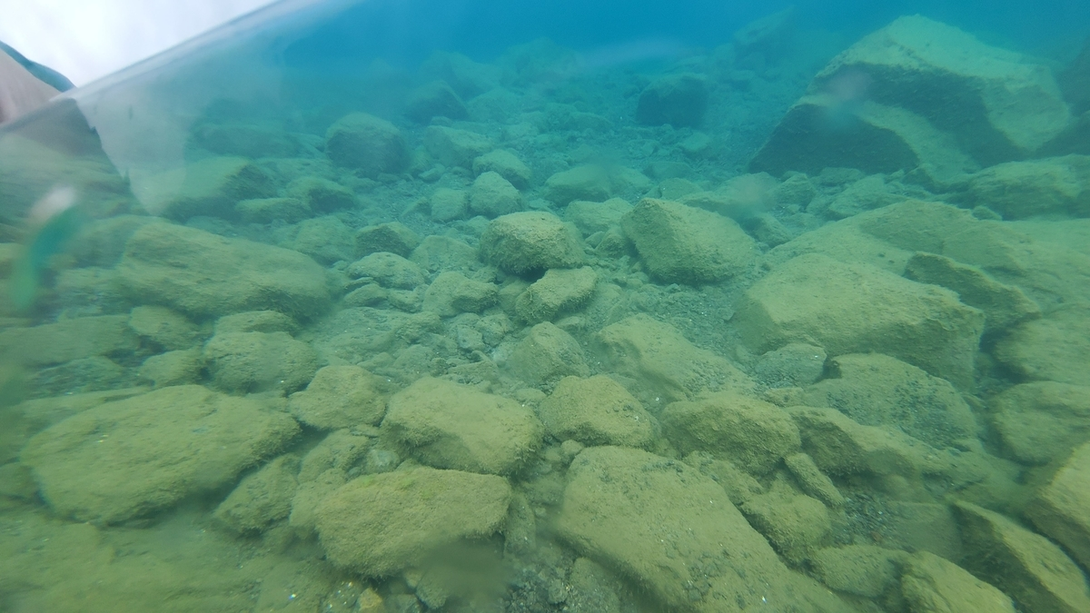 洞爺湖(北海道)でクリアカヌーを体験してきた感想ブログ