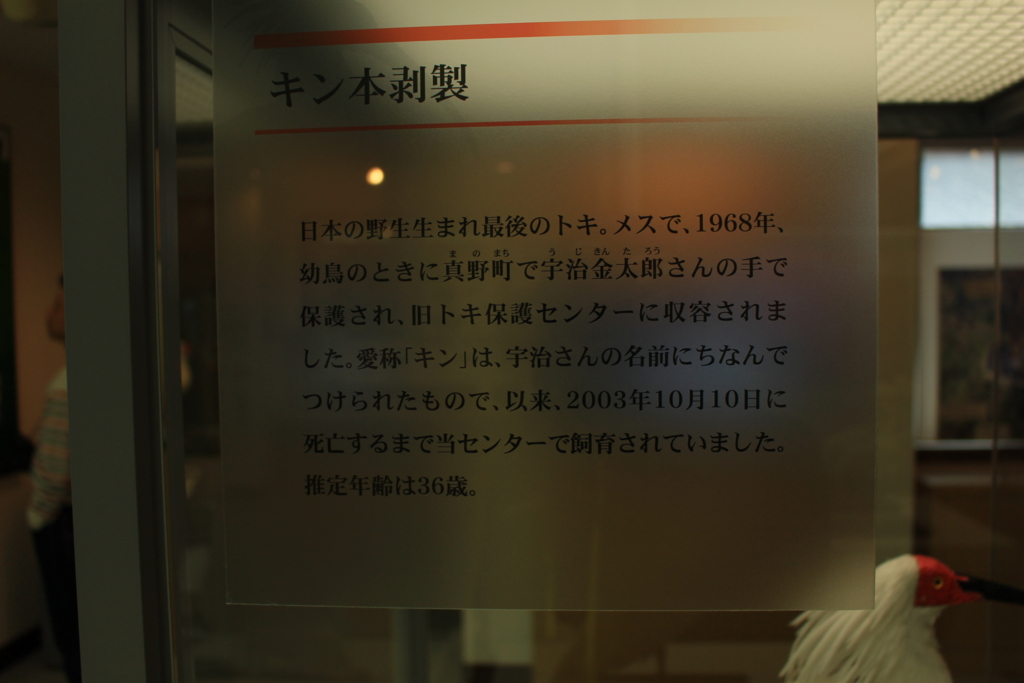 f:id:INU-SUN:20170104050756j:plain