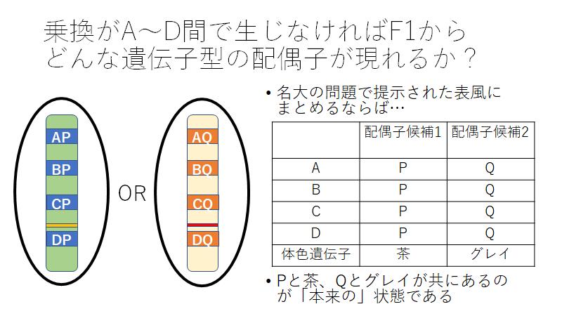 f:id:I_my_mine:20210304214724p:plain