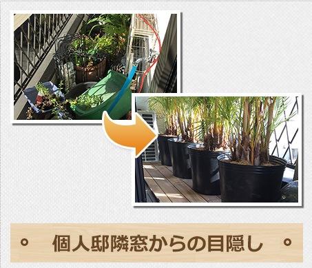 f:id:Ibuki-en:20160828182943j:plain