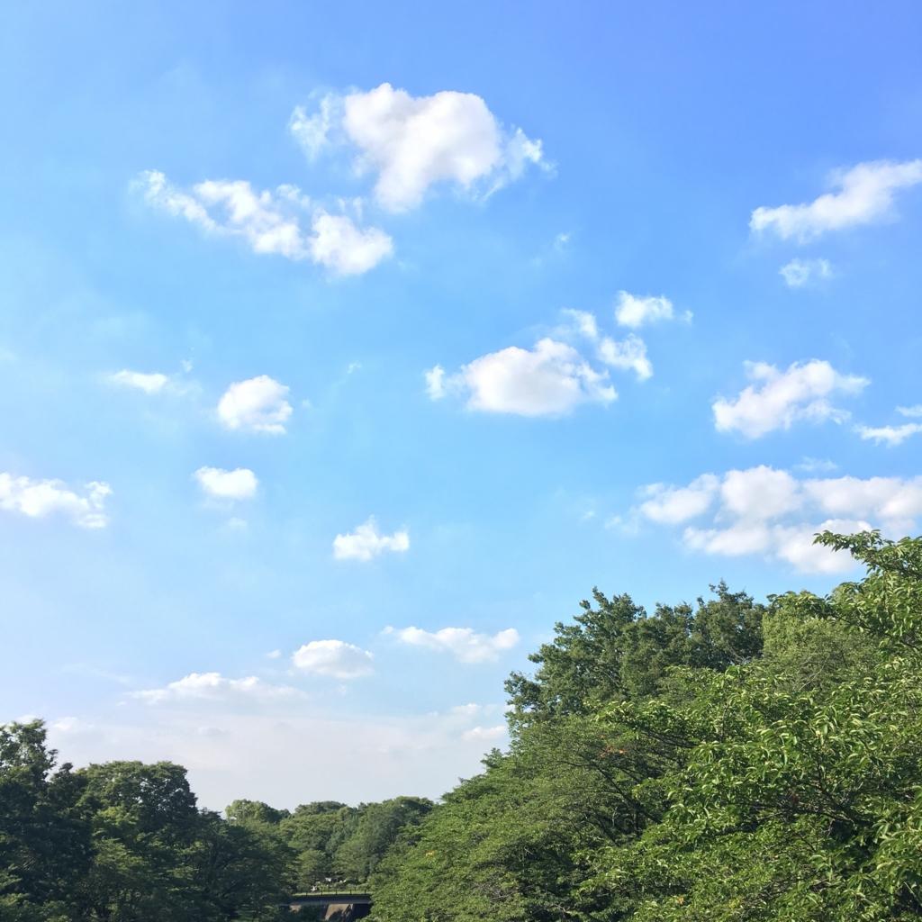 f:id:IchikoIchiko:20160731011316j:plain