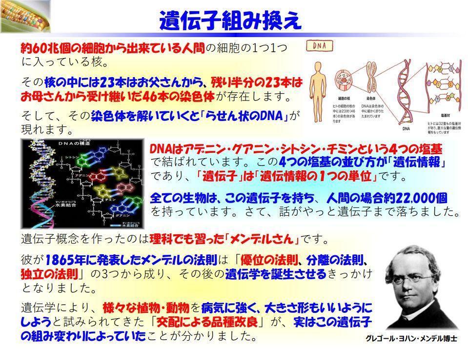 f:id:IchiroStories:20210308111029j:plain