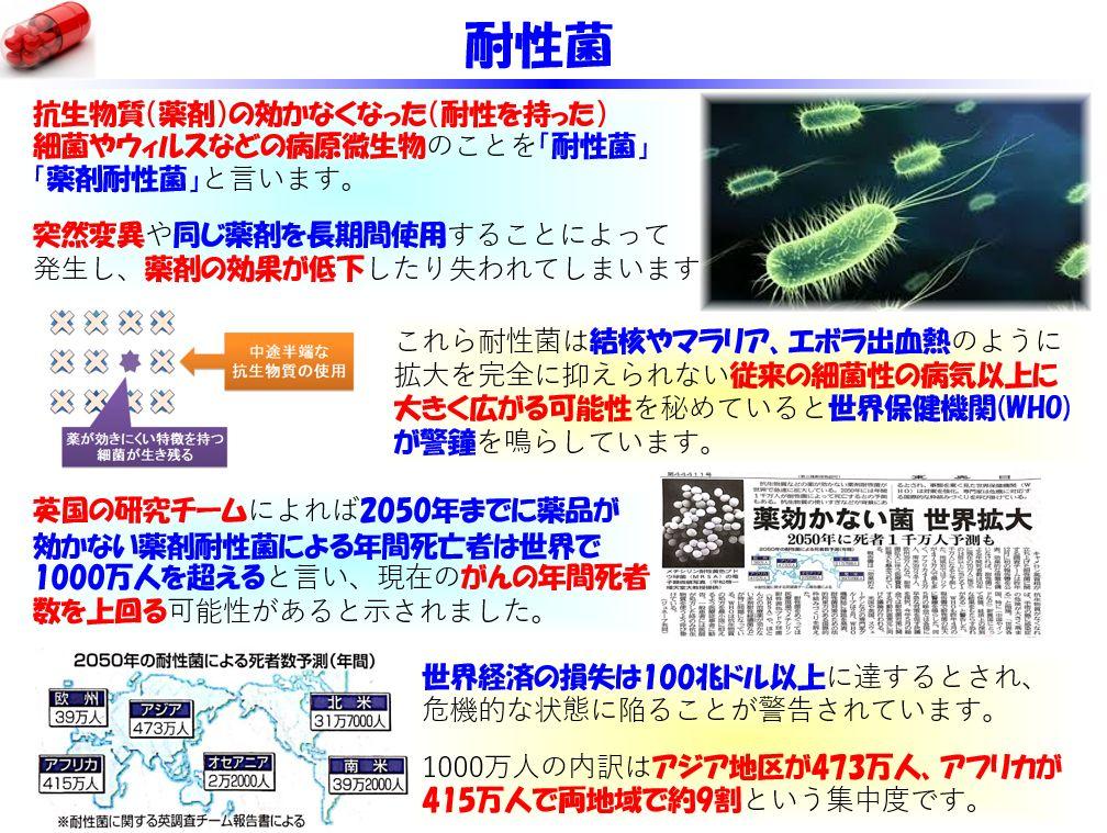 f:id:IchiroStories:20210408205306j:plain