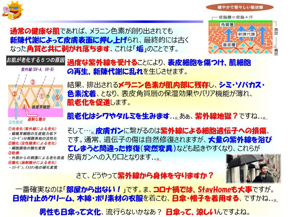 f:id:IchiroStories:20210505152506j:plain