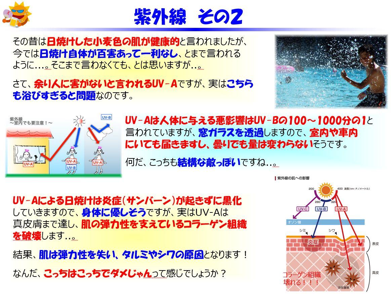 f:id:IchiroStories:20210505152519j:plain