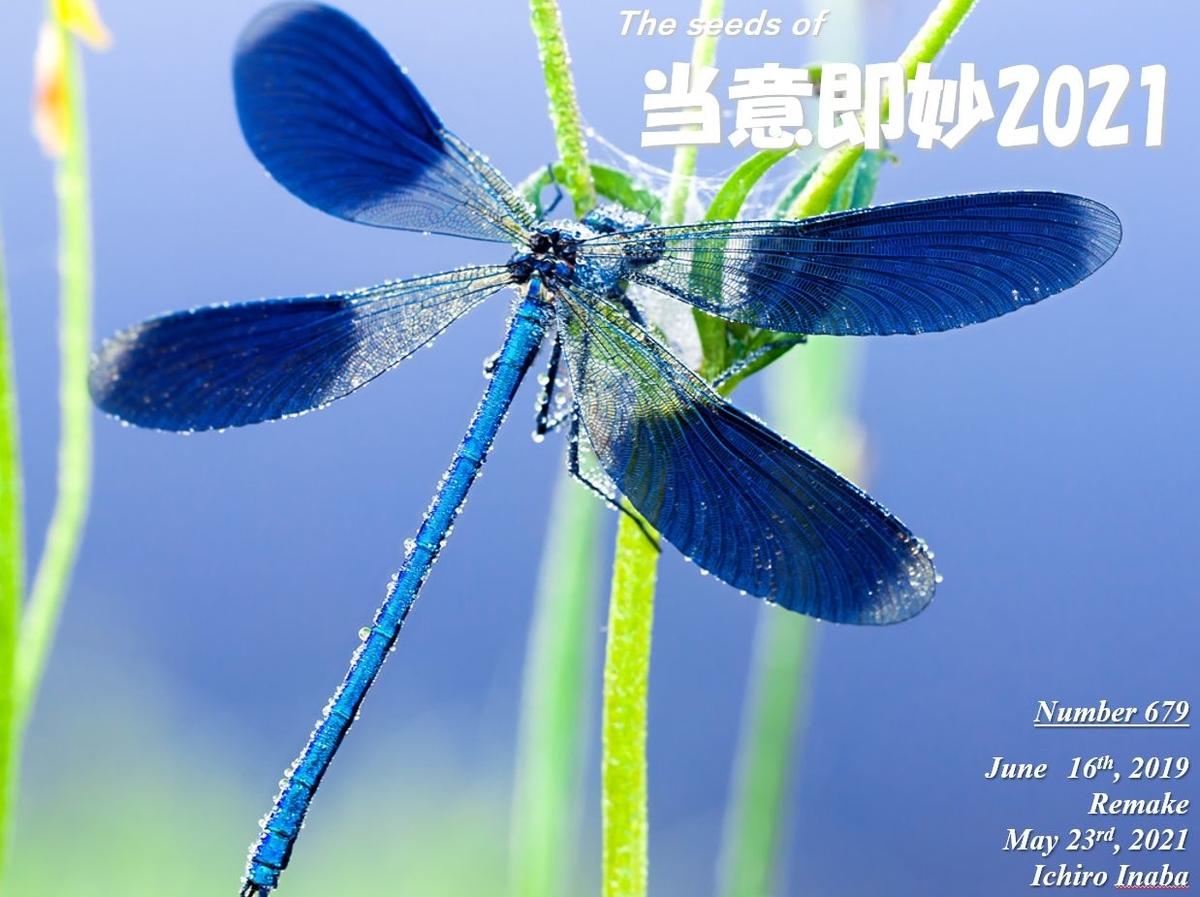 f:id:IchiroStories:20210523094110j:plain