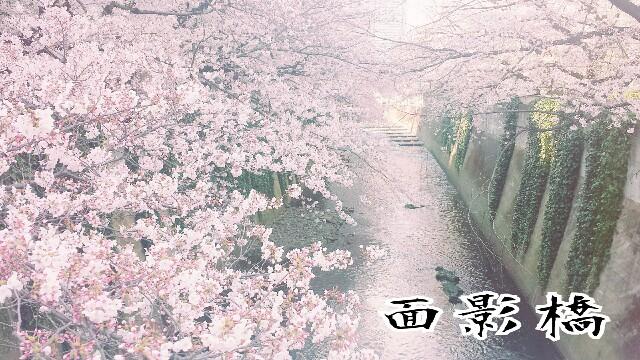 f:id:Ieyasu:20190622194558j:image