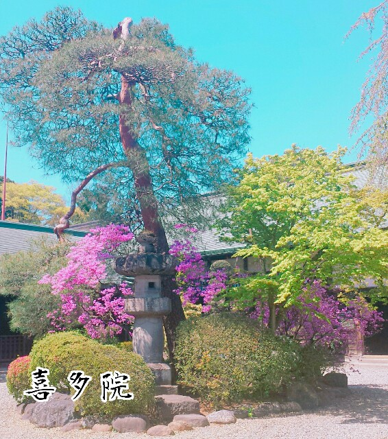 f:id:Ieyasu:20190622195650j:image