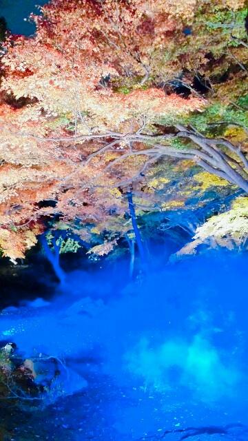 f:id:Ieyasu:20191210010421j:image