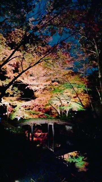 f:id:Ieyasu:20191210010529j:image