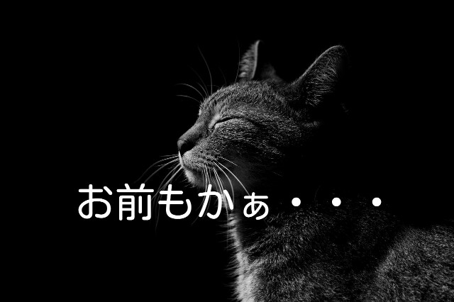 f:id:Ieyasu:20200116221304j:image