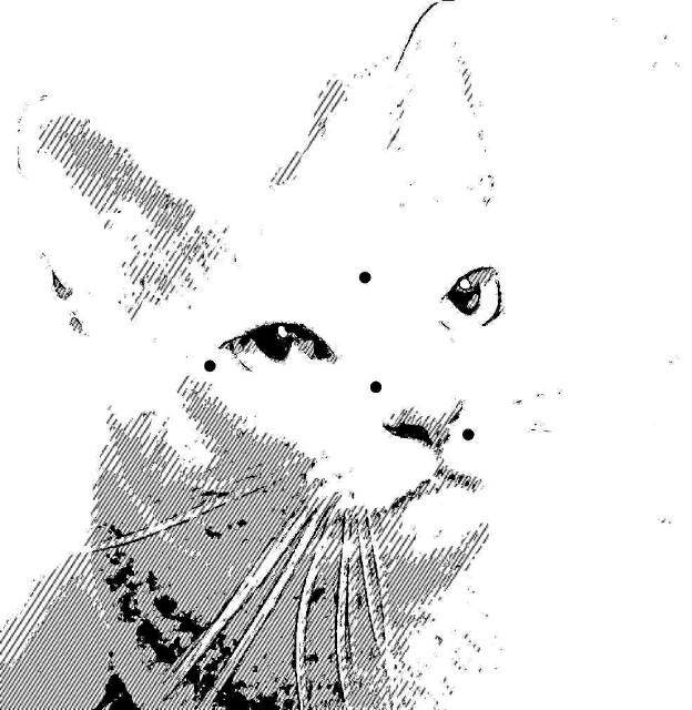 f:id:Ieyasu:20200121191540j:image
