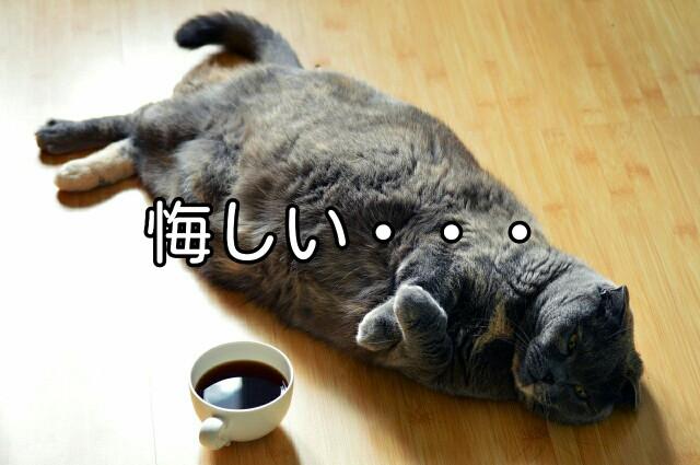 f:id:Ieyasu:20200131200623j:image