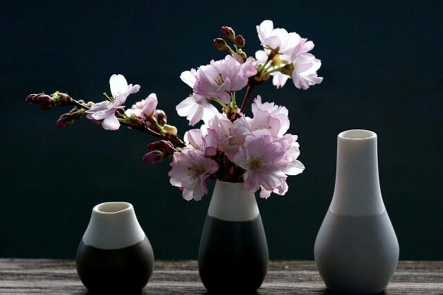 f:id:Ieyasu:20200218210913j:image
