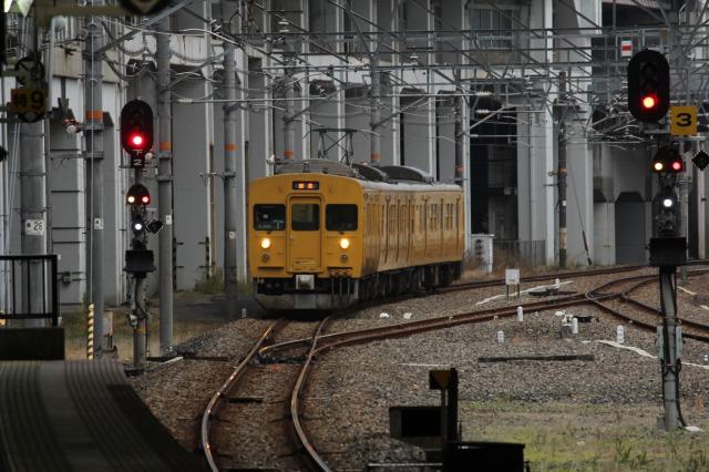 f:id:Ikeeki:20190204121808j:plain