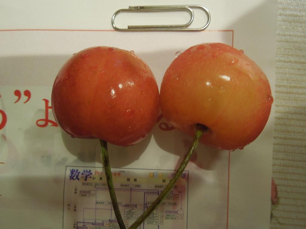 f:id:Ikegamiblog_tokyo:20160622222013j:plain