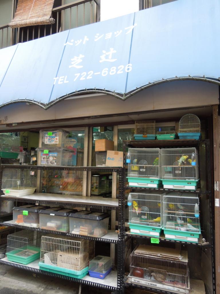 f:id:Ikegamiblog_tokyo:20160724220443j:plain