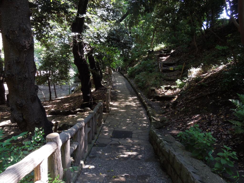 f:id:Ikegamiblog_tokyo:20160821201141j:plain