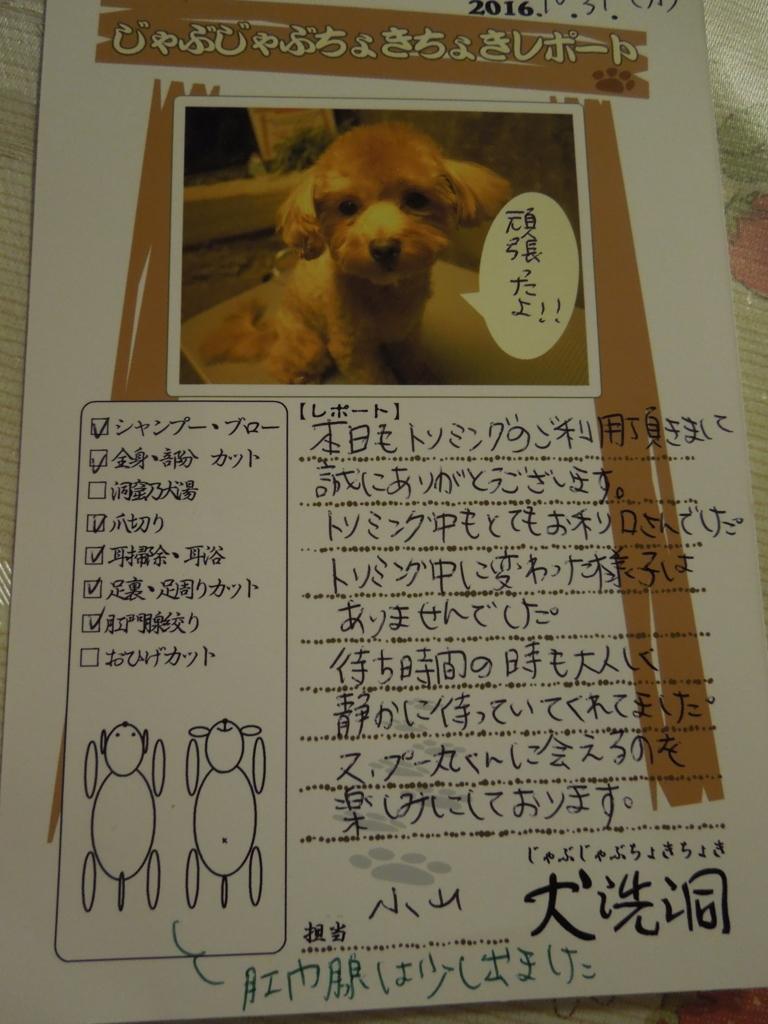 f:id:Ikegamiblog_tokyo:20161103231046j:plain