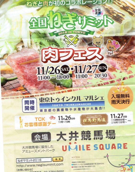 f:id:Ikegamiblog_tokyo:20161129214537j:plain
