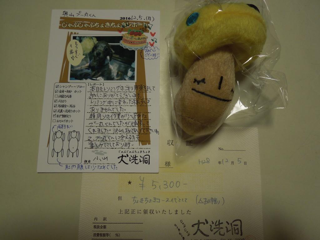 f:id:Ikegamiblog_tokyo:20161206222218j:plain