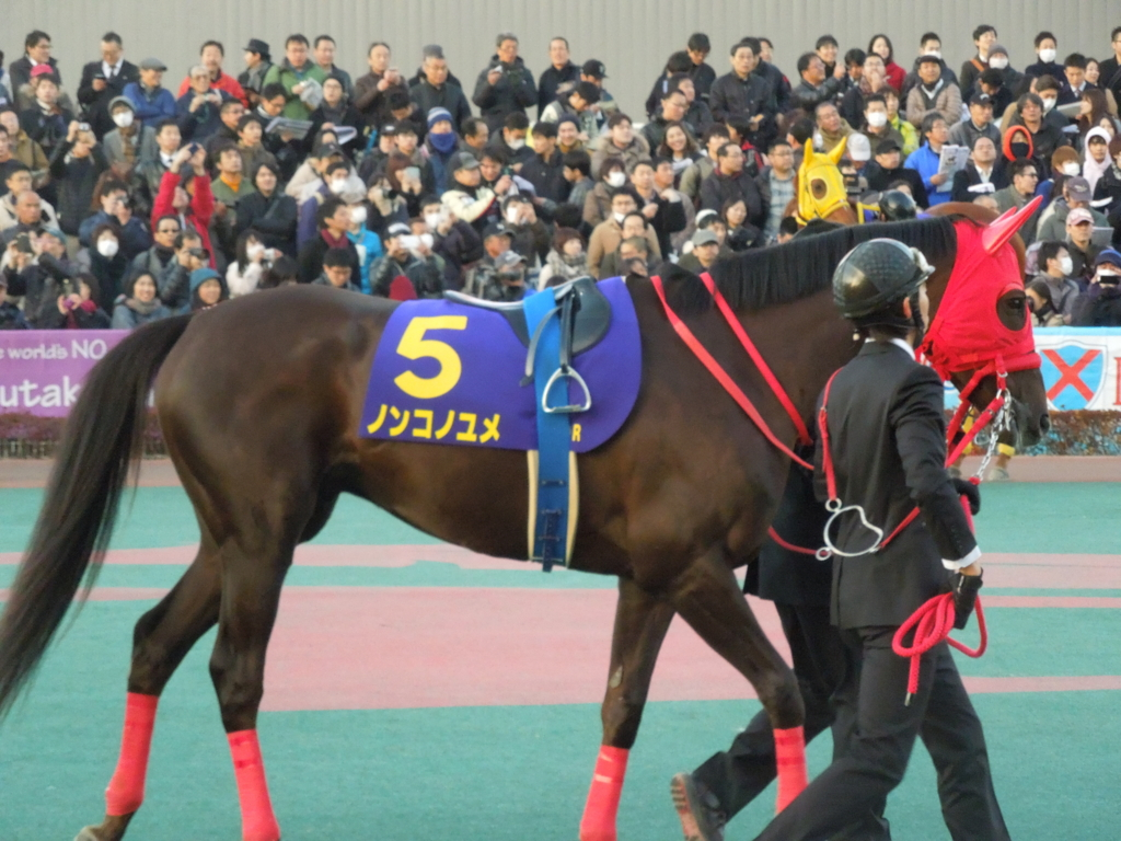 f:id:Ikegamiblog_tokyo:20161230130440j:plain