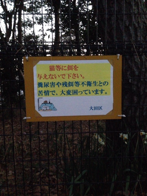 f:id:Ikegamiblog_tokyo:20170113082118j:plain