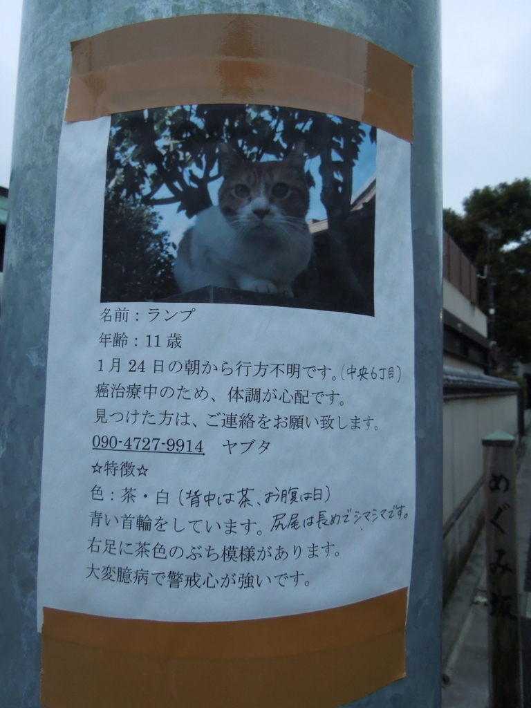f:id:Ikegamiblog_tokyo:20170217214839j:plain