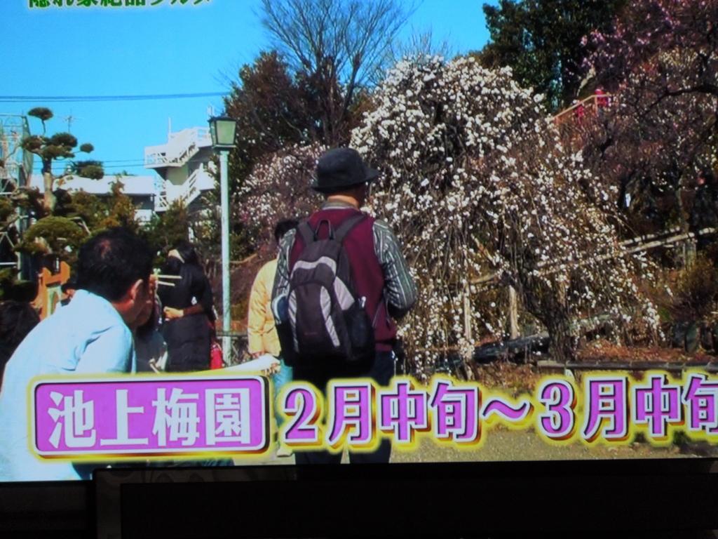 f:id:Ikegamiblog_tokyo:20170220211539j:plain