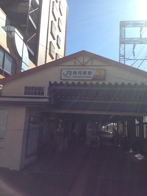 f:id:Ikegamiblog_tokyo:20170221222043j:plain