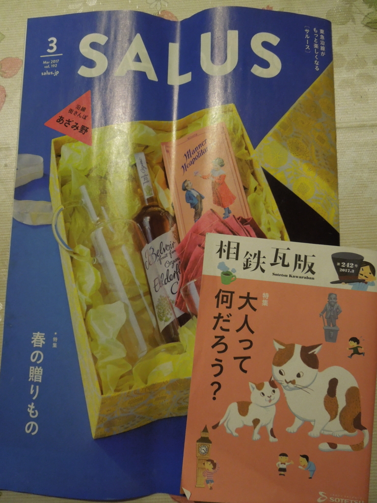 f:id:Ikegamiblog_tokyo:20170306204439j:plain