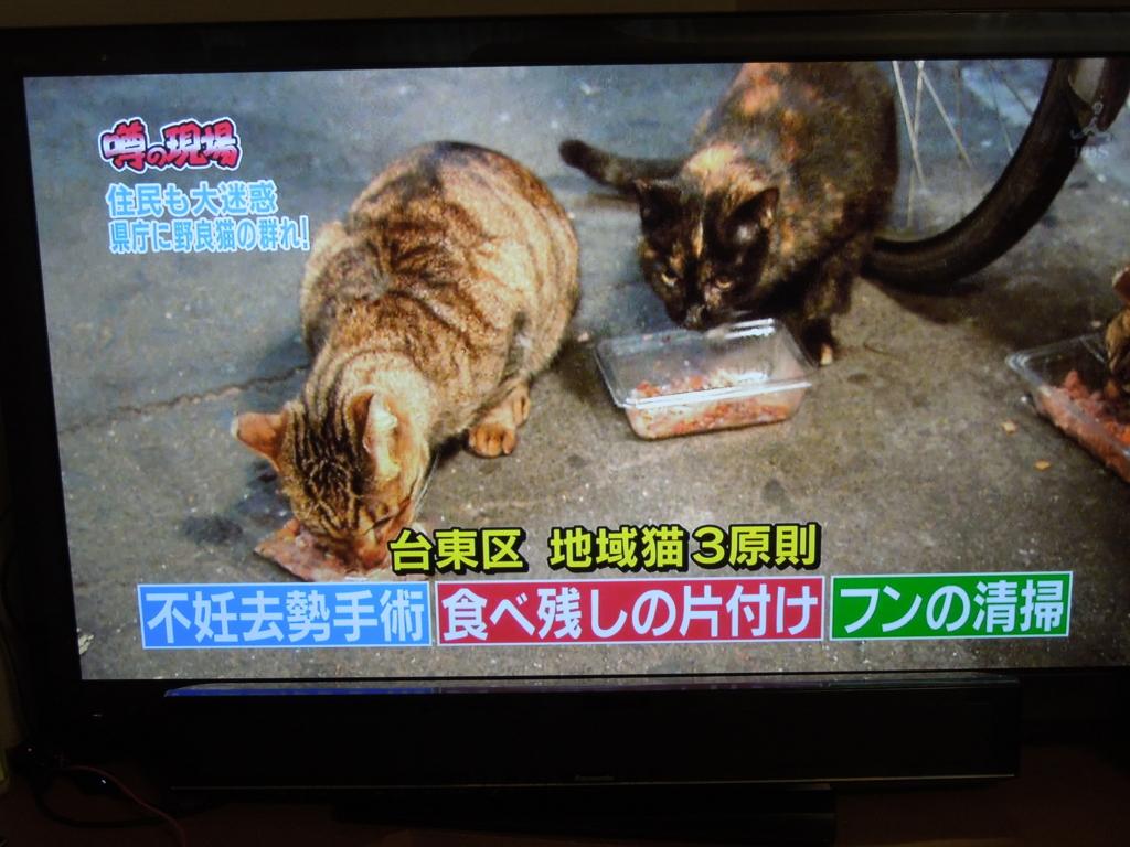 f:id:Ikegamiblog_tokyo:20170326204610j:plain