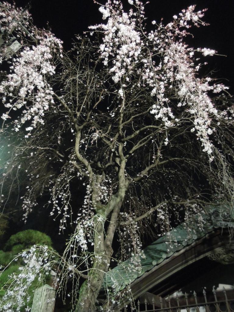 f:id:Ikegamiblog_tokyo:20170330211656j:plain