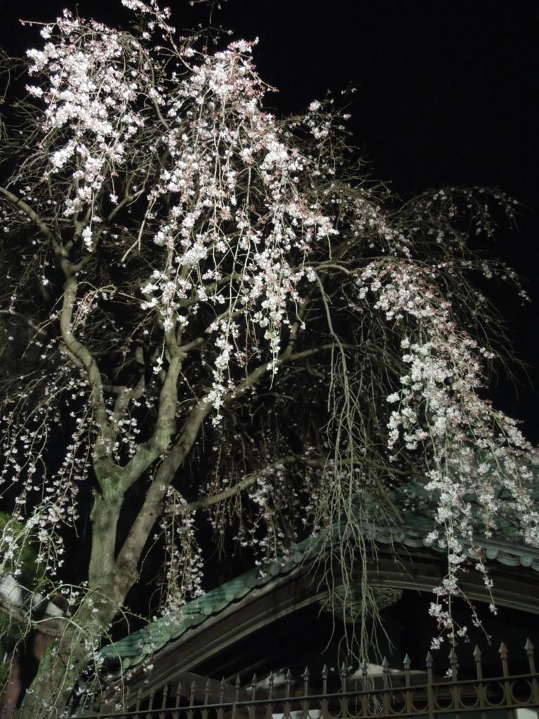 f:id:Ikegamiblog_tokyo:20170330212038j:plain