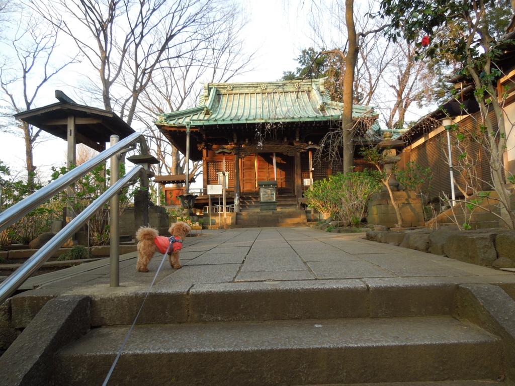 f:id:Ikegamiblog_tokyo:20170402223255j:plain