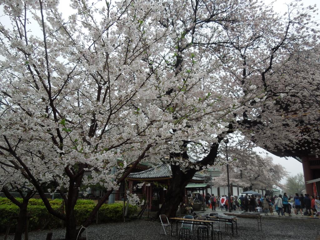 f:id:Ikegamiblog_tokyo:20170410223956j:plain
