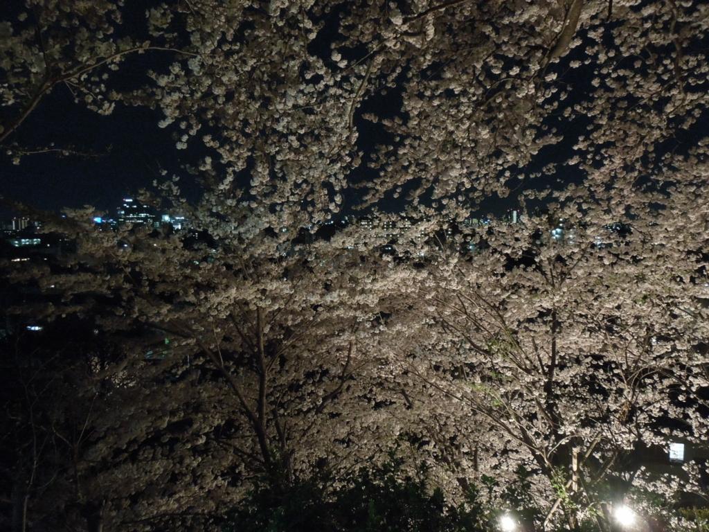 f:id:Ikegamiblog_tokyo:20170411224837j:plain